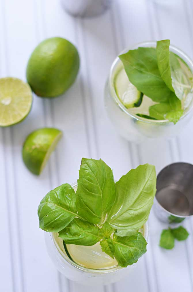 Cucumber Basil Gin and Tonic