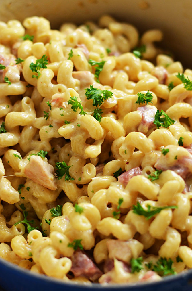 One Pot Chicken Cordon Bleu Alfredo with Toasted Breadcrumbs. This easy dinner features tender chunks of chicken breast, ham, and a simple swiss cheese alfredo sauce.   hostthetoast.com