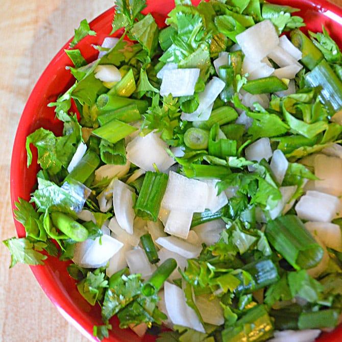 Onion Cilantro Relish