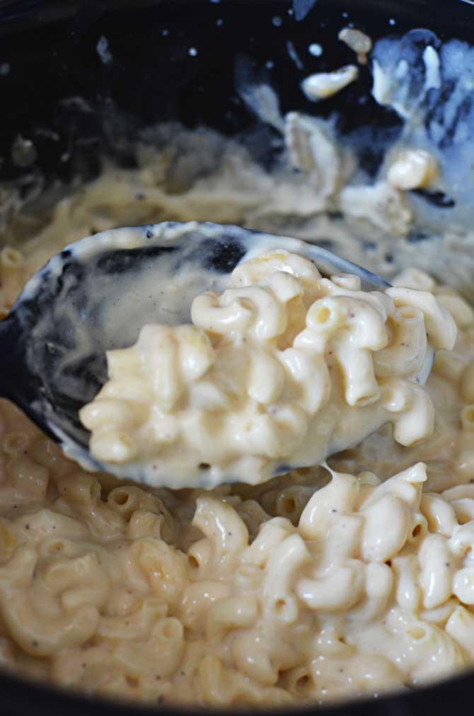 Three Cheese Crock Pot Macaroni and Cheese. So rich, so creamy, and so extremely cheesy! Just throw the ingredients in the slow cooker (even the uncooked pasta) and in just a few hours you have some of the tastiest mac out there! | hostthetoast.com