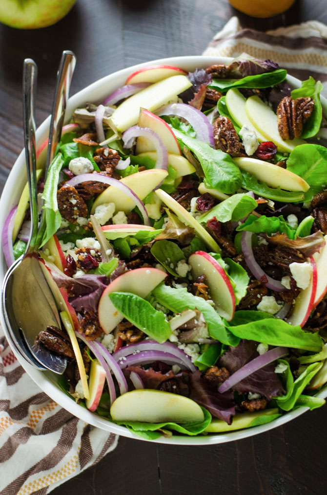 Honey Crisp Apple Salad with Cider Vinaigrette. Baby romaine greens, honey crisp apples, candied pecans, gorgonzola crumbles, dried cranberries, and red onion pack this salad with bold flavor! Not to mention the homemade cider vinaigrette makes the whole thing taste so perfectly Fall-worthy. | hostthetoast.com