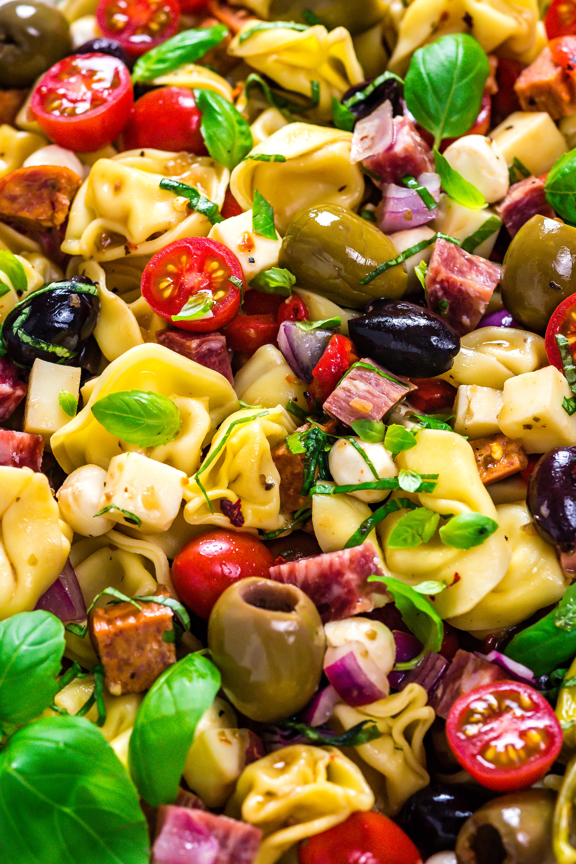A close-up of Antipasto Tortellini Pasta Salad, garnished with fresh basil.